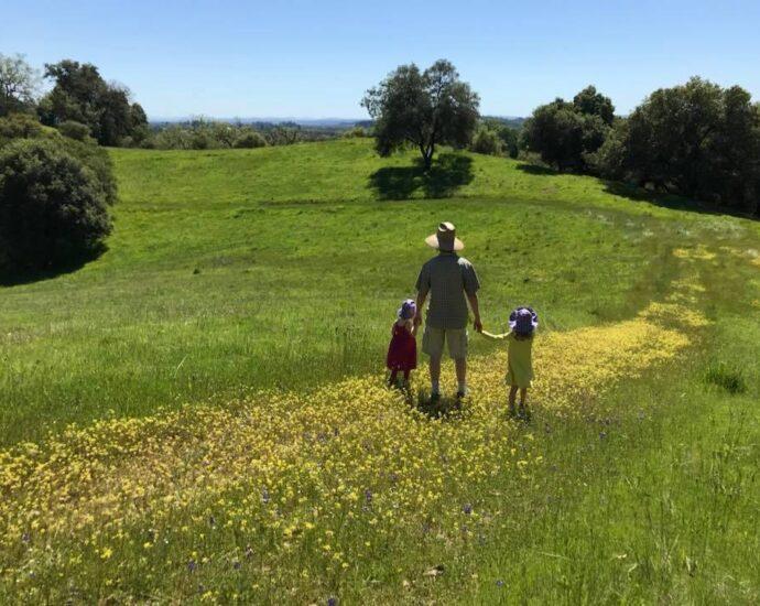 Emmett Hopkins, husband to Fifth District Supervisor Lynda Hopkins, walks through a field of Sonoma County mustard. Lynda Hopkins photo.