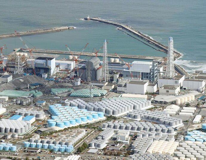 A decade on Japan is still grappling with the environmental impact of Fukushima | News