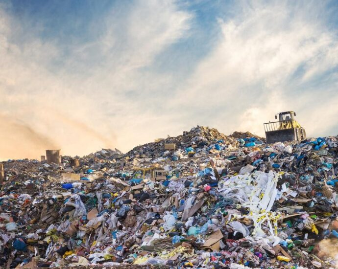 Recycling Plastics And Other Important Materials Needs Some Real Help