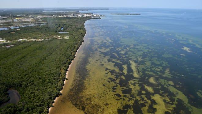Suncoast Waterkeeper, Tampa Bay Waterkeeper say DEP failed