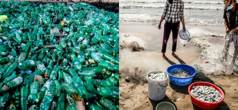 Vietnam tests waters for plastic credits to fight marine pollution