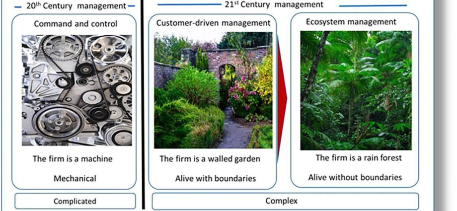 Why Ecosystem Firms Are The Future Of Management