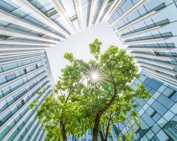 Corporate Social Responsibility and the Environment
