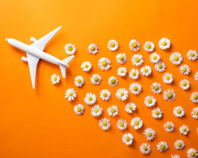 Sustainability in Aviation Reclaims Attention as Airlines and Airports Ramp Up Recovery Plans