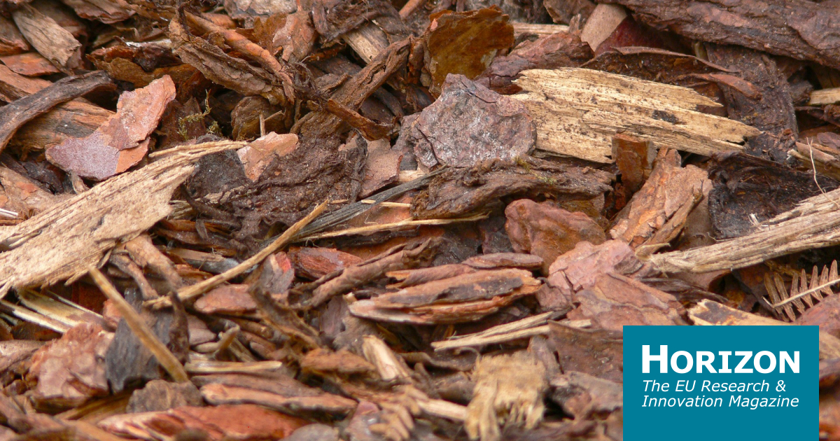 Why scientists want to turn tree bark and compost into aircraft wings and plastic bags | Horizon: the EU Research & Innovation magazine