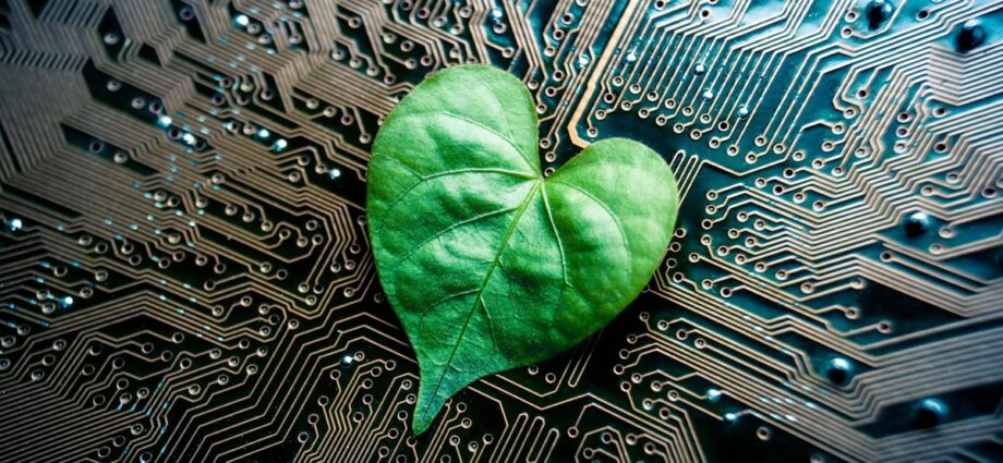 10 Most Sustainable Consumer Tech Companies