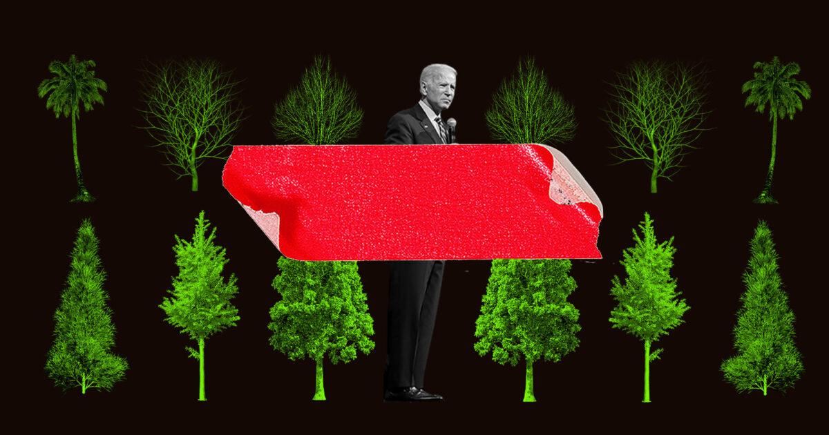 Biden's Green Agenda Meets Environmental Red Tape – Reason.com