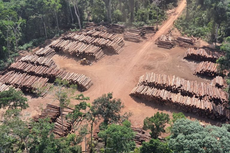 Brazil's environment minister faces second probe linked to illegal timber