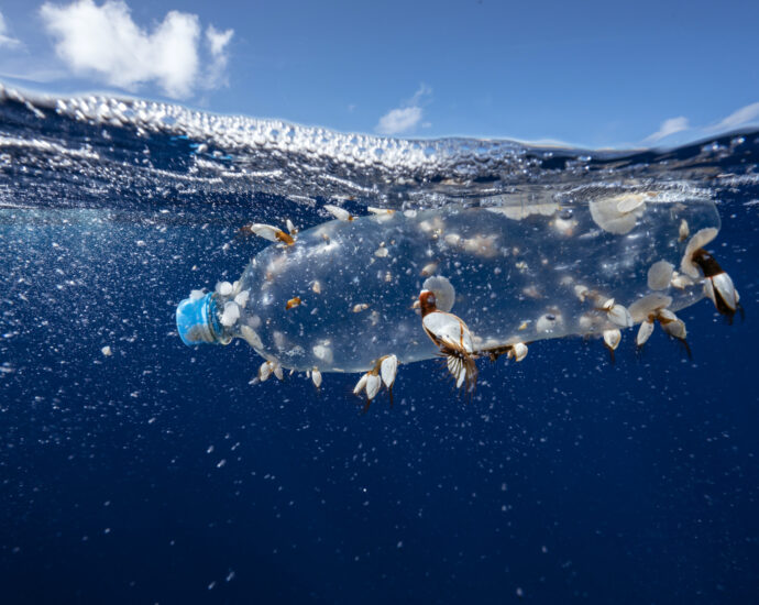 Feds stand firm on toxic ruling as Big Plastic threatens lawsuit