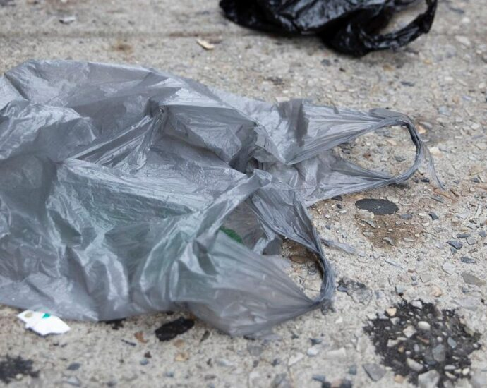 Philadelphia and Pittsburgh move ahead with plastic bag bans as Pennsylvania's preemption nears its end · Spotlight PA
