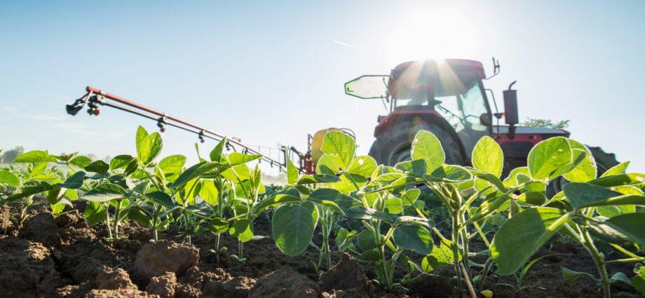 impacts of pesticides