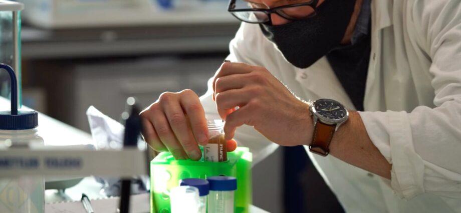 'Vegan spider silk' provides sustainable alternative to single-use plastics