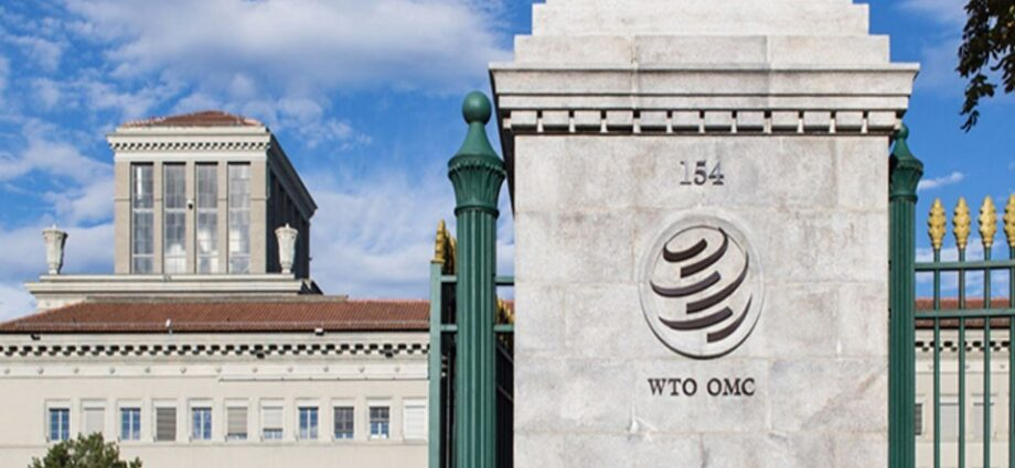 WTO TRIPS Council June 2021: UK Statements
