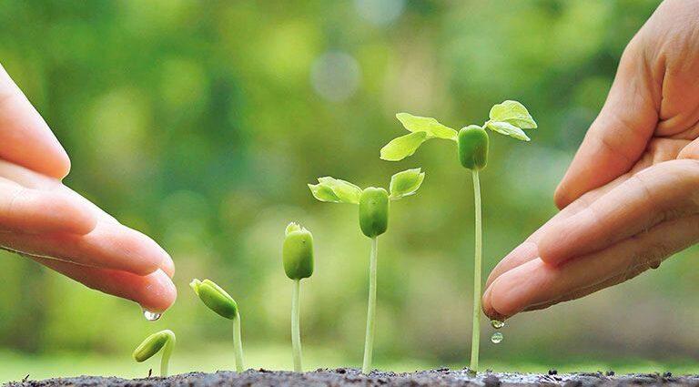 World Environment Day – Kashmir Reader