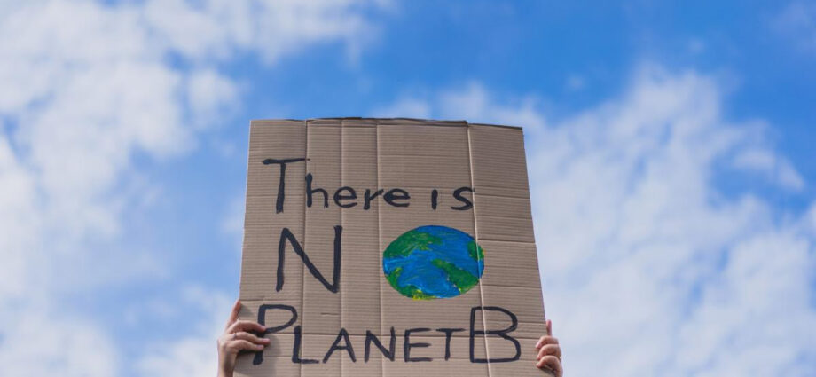 World Environment Day: 15 small changes you can make to save the planet