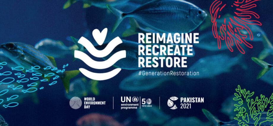 World Environment Day and World Ocean Day: Reimagine, recreate, restore. | News item