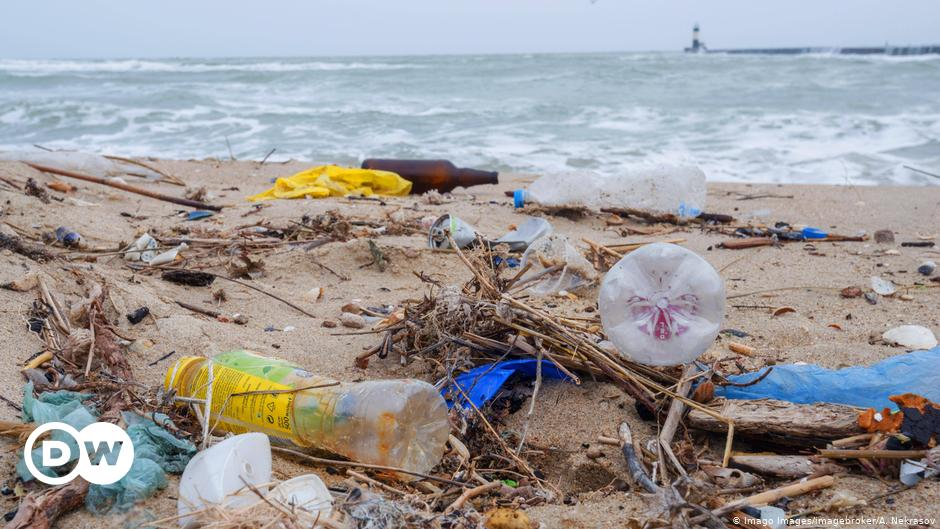 5 things to know about the EU single-use plastics ban | Environment| All topics from climate change to conservation | DW