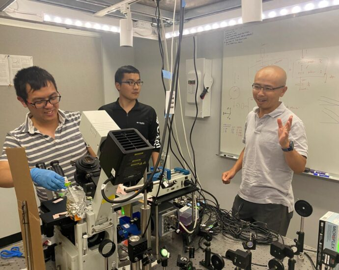 Chemistry discovery could remove micropollutants from environment