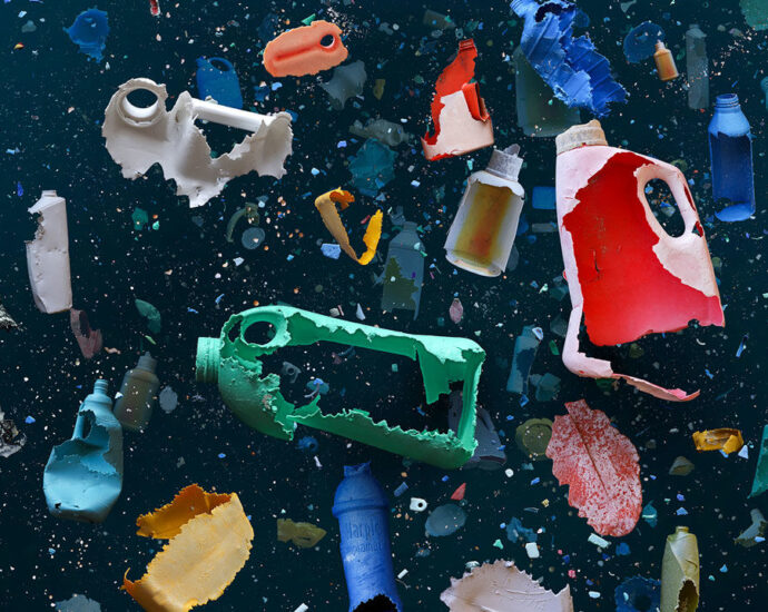 Could plastic-eating microbes take a bite out of the recycling problem? | Science