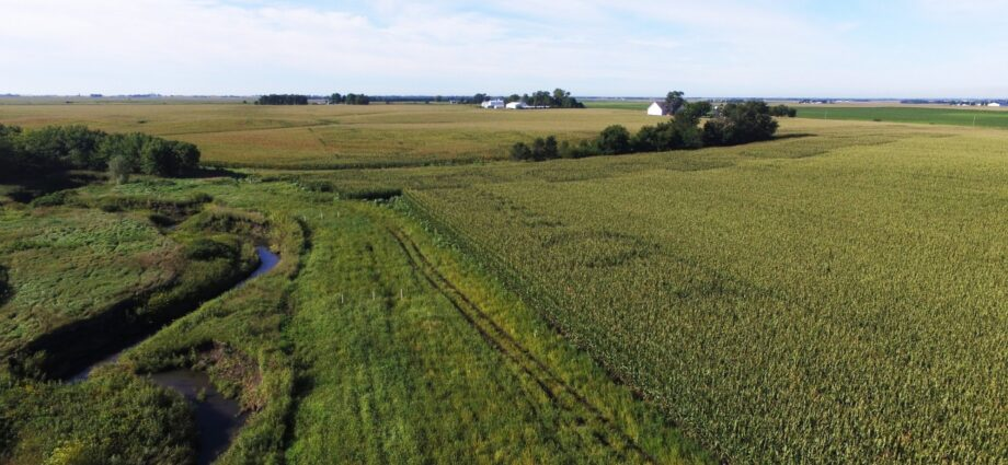Edge of Field Practices Can Help Food and Ag Companies Meet Sustainability Goals