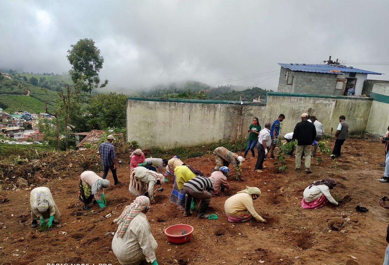 Environmental activism in the Nilgiris: too early to rejoice?