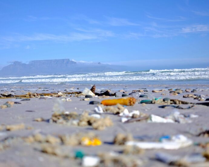 Everything you should know about single-use plastic