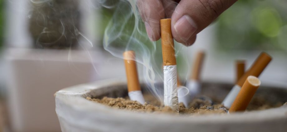 How Does the Tobacco Industry Affect the Environment? New Brief Sheds Insight