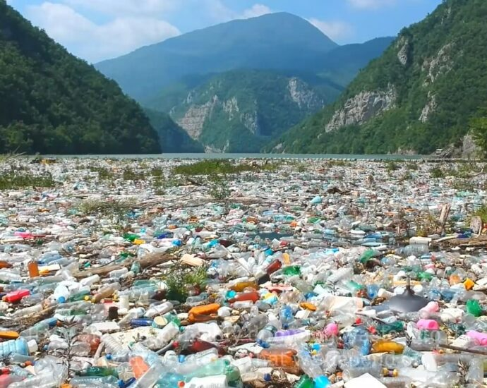 July 3 is International Plastic Bag Free Day. It's for us to make the choice