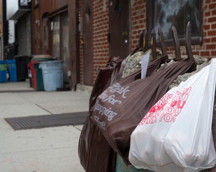 NYC Plastic Bag Ban Violators Getting Away with Breaking Law