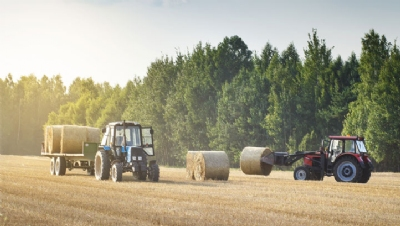 National Food Strategy presses UK Government to clarify environmental incentives for farmers post-Brexit