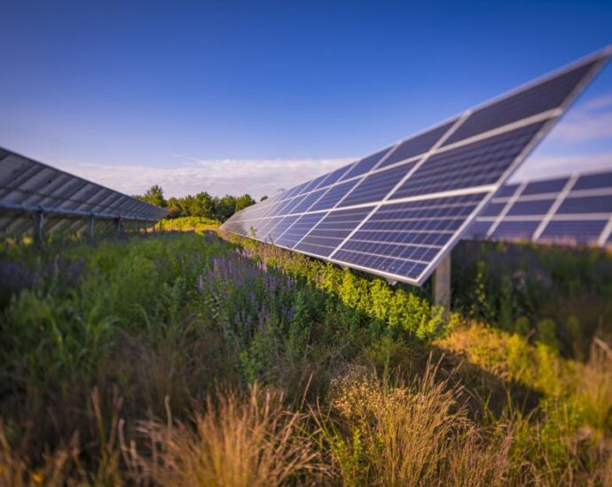 Raleigh County utility-scale solar project has new owner | Energy and Environment