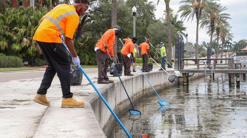 Tampa Bay has Red Tide questions. Here are some answers.