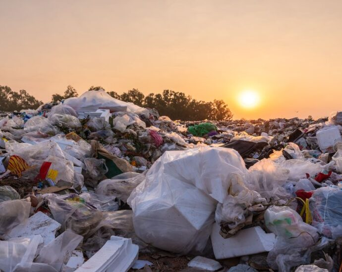 The Earth's Corr: The truth about plastic will wipe the smile off your face - Shauna Corr