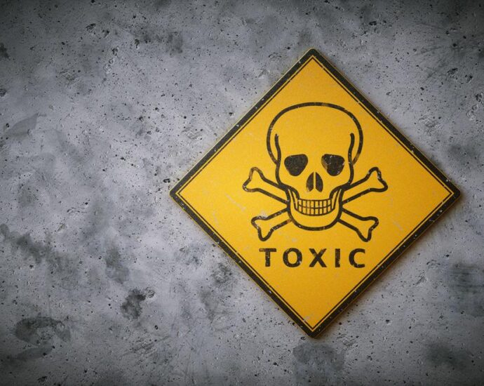 Whatever 'Model' You Use, Reading Tests Prop Up A Toxic Education Environment