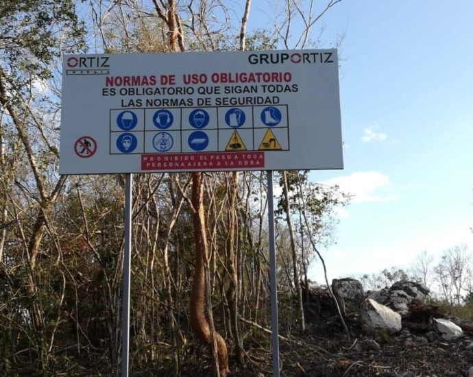 For the construction of the suspended Yucatán Solar Park on the Yucatán peninsula in southeastern Mexico, the site was only partially cleared. Like most infrastructure projects involving Chinese companies and banks in Latin America, the plant lacks socio-environmental standards. CREDIT: Courtesy of Asamblea Múuch' Xíinbal