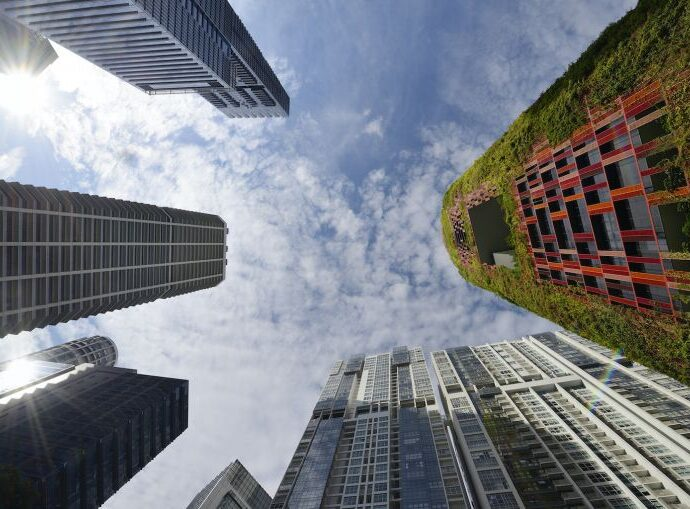 Green buildings: Reaching beyond energy efficiency to tackle embodied carbon, Environment News & Top Stories