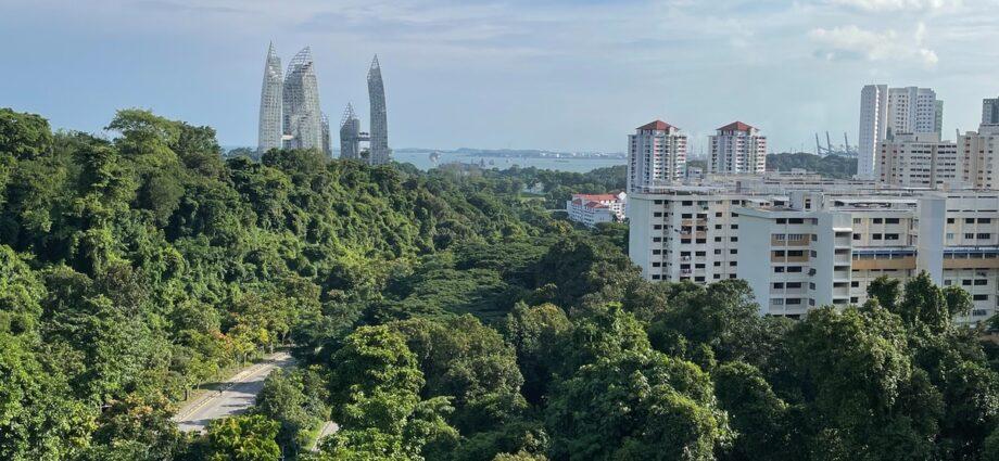 Anti-environmental valuesrevealedin Singapore's history textbooks | News | Eco-Business