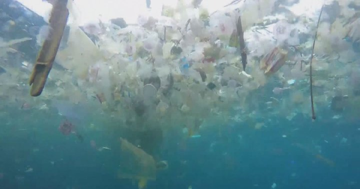 Despite political promises, plastic continues to fill Canada's lakes, rivers and oceans - National