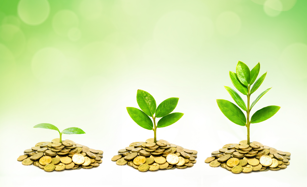 Innovative Financing for the Sustainable Development Goals