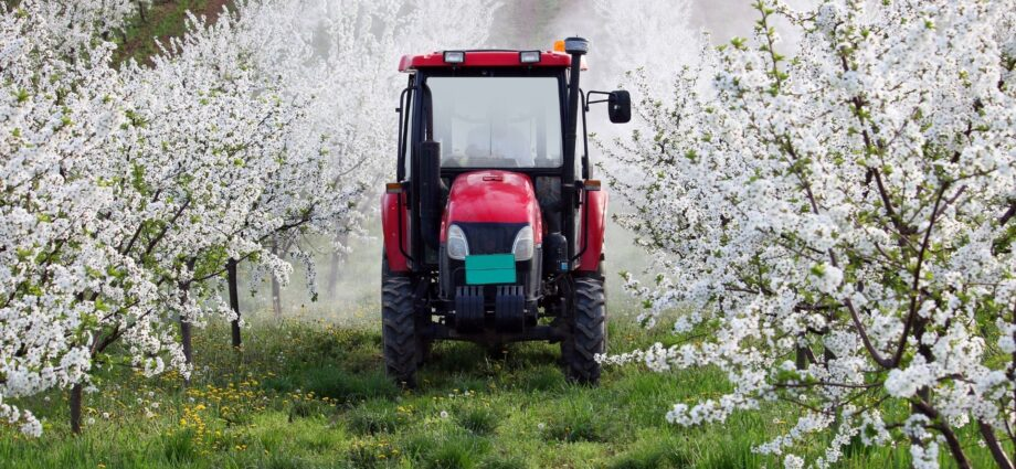 Organic Should Must the Way in Environmental and Health Protection
