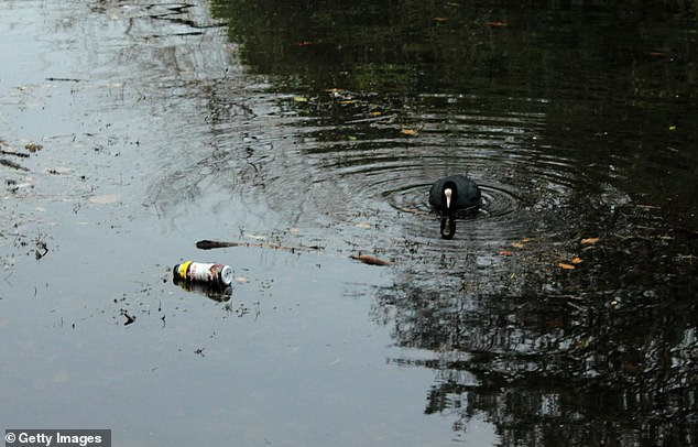 A surge of plastic pollution in freshwater lakes could result in a rise of of oxygen
