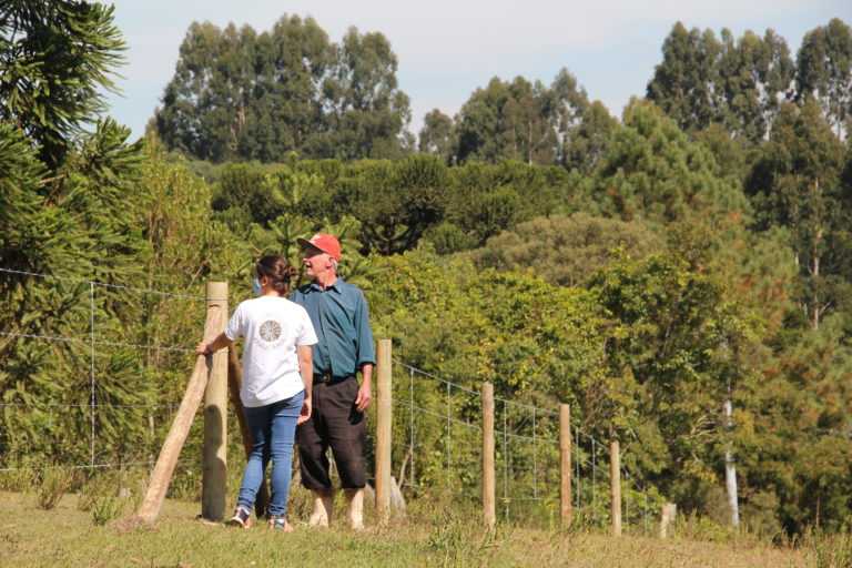 Project works with farmers to restore Brazilian pine forests