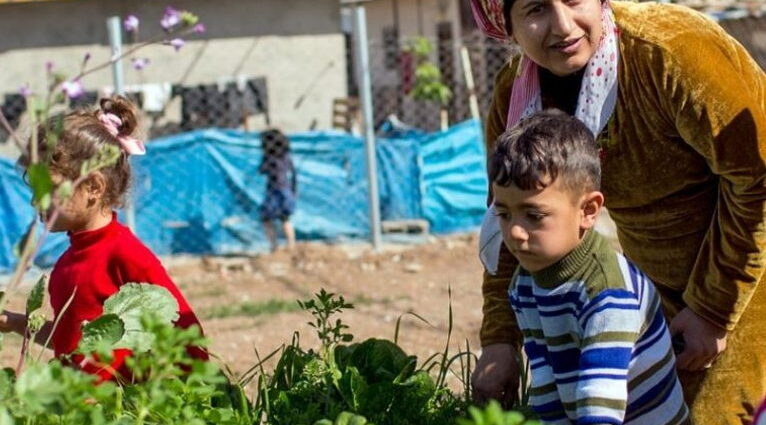 Refugees and Restoration - Resilience