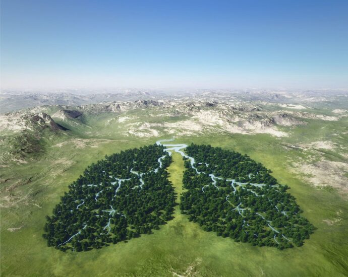 The Green Environment, Air Pollution, and Respiratory Health
