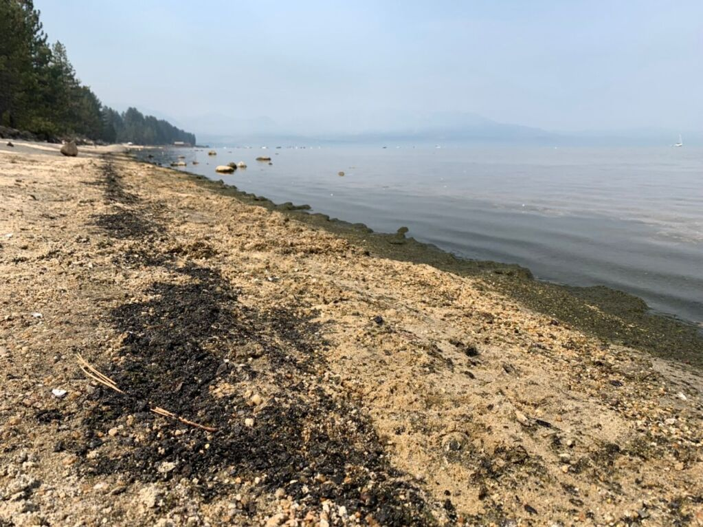 Uncertainty around long-term environmental impact of the Caldor Fire