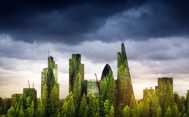 What is 'natural capital' and why should investors care?