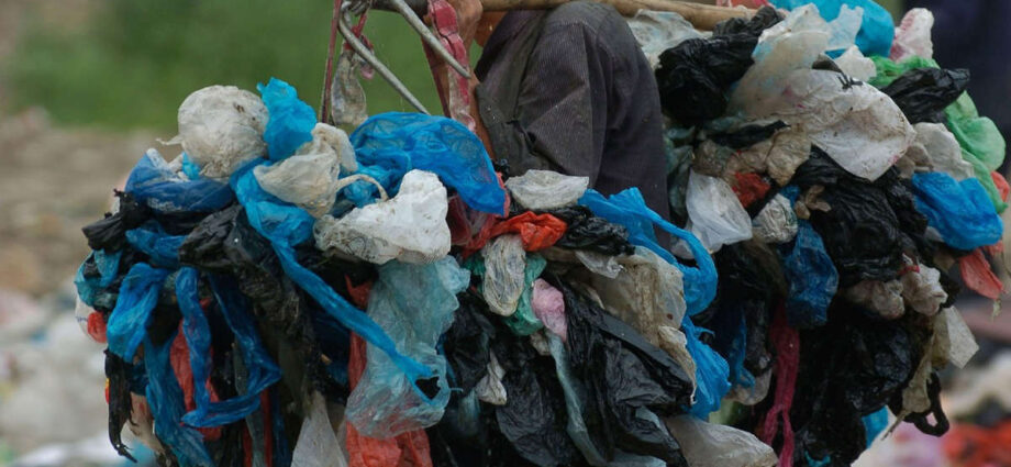 Companies That Produce the Most Plastic Waste Around the World