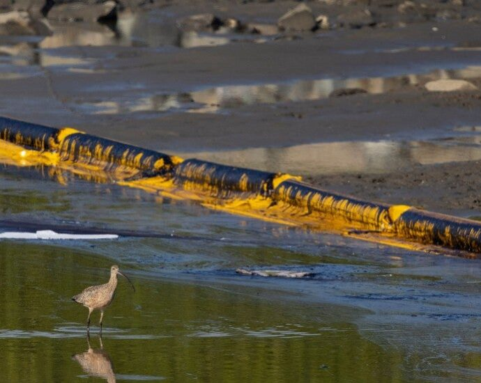 Overnight Energy & Environment — California lawmakers clash over oil spill