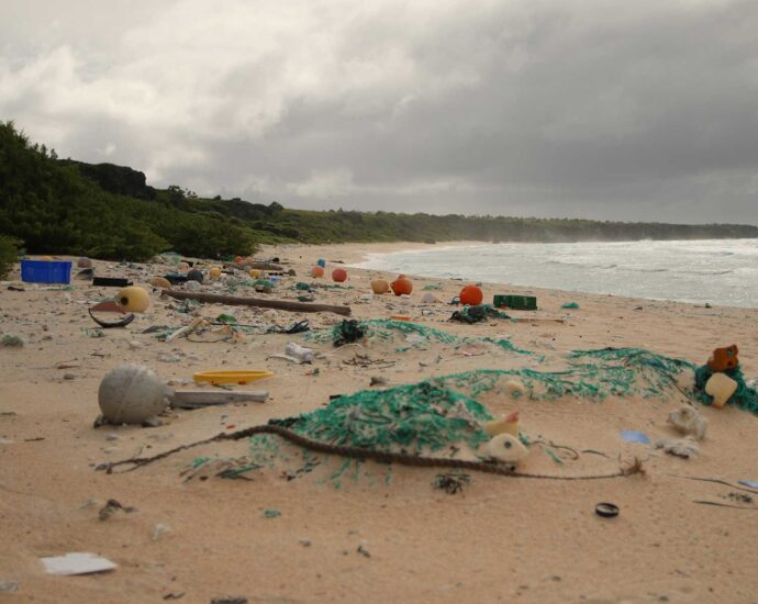 Plastics Make Beaches Hotter During the Day and Colder at Night | Science